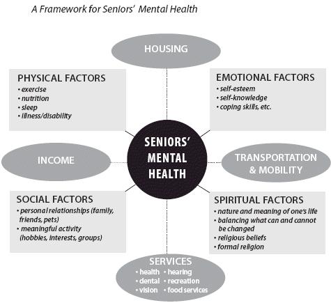 Framework flowchart for seniors' mental health